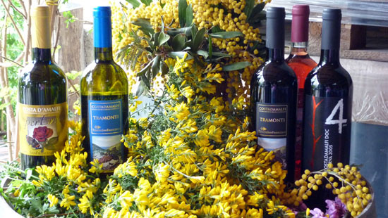 amalfi coast wine tour